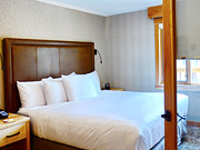 Moose Hotel & Suites - One Bedroom Suite with King Bed