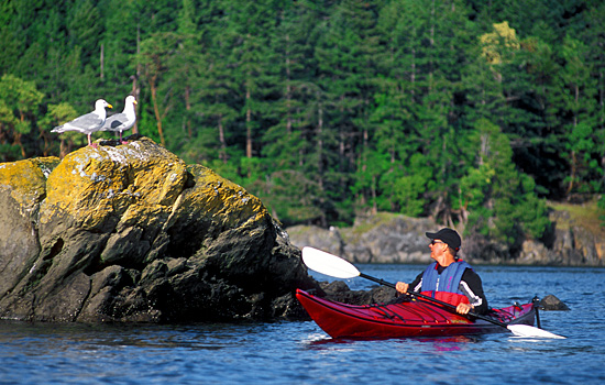 Sea Kayaking the Atlantic Coast in Canada