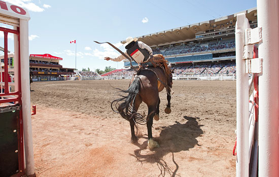 Add a visit to the Calgary Stampede