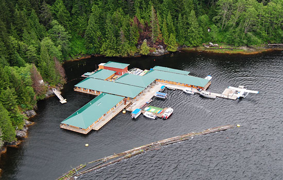 Visit an amazing wilderness lodge such as Knight Inlet