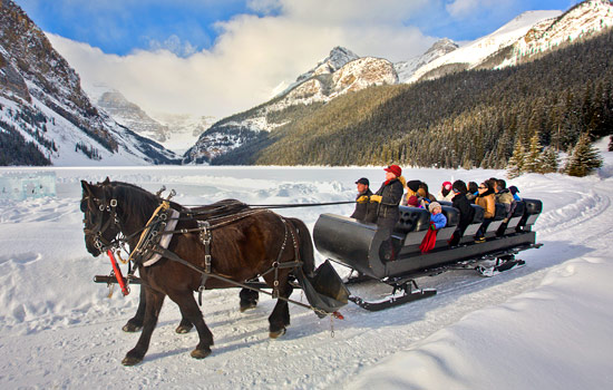 Sleigh Ride at Lake Louise - Sleigh Ride at Lake Louise