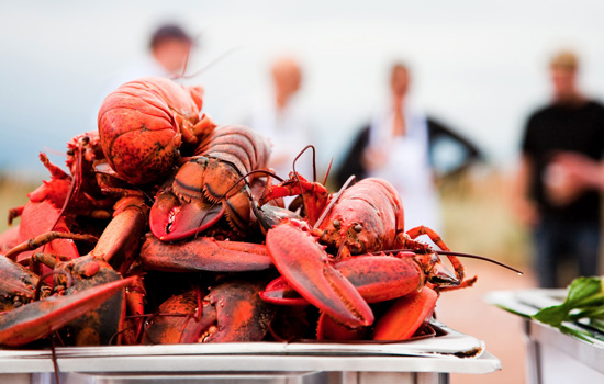Enjoy a traditional lobster supper
