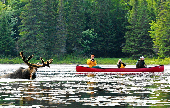 Add-on a wilderness adventure in Ontario