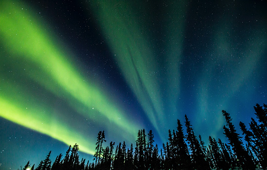 A Northern Lights experience in the Yukon.