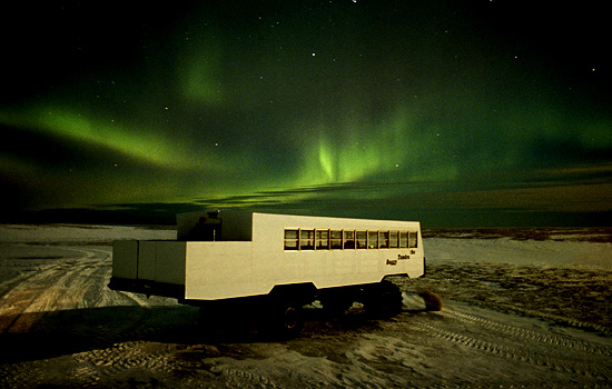The northern lights over the Tundra Buggy