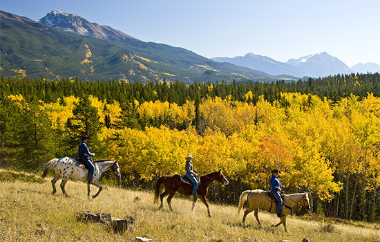 Horseback riding, Jasper National Park