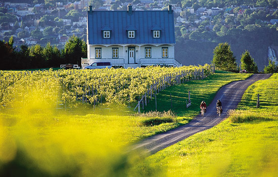 Explore the countryside of Quebec