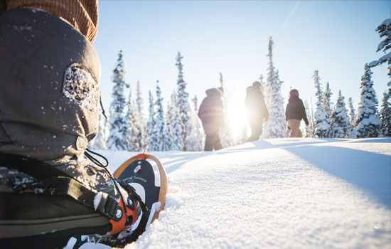 Enjoy winter activities such as snow shoeing