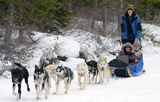 Absolute highlight of the trip – the dogsledding while it was snowing