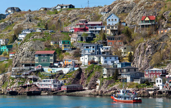 This was a great way to see Newfoundland