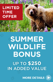 Limited Time Offer – Summer Wildlife Booking Bonus 2016