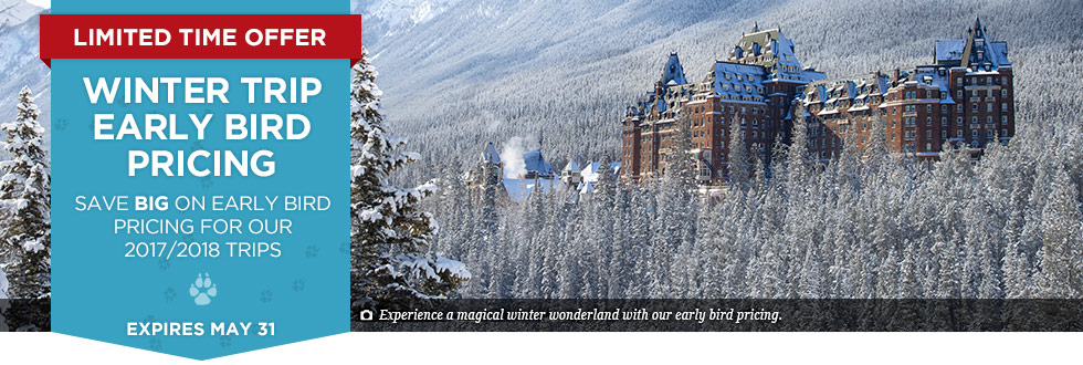 Exclusive Offer – Winter Trip Early Bird Pricing