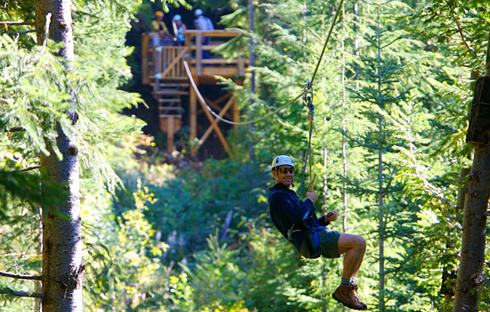A man rides through the forest on a ziptrekking tour in Whistler