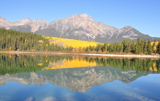Jasper National Park nature walk