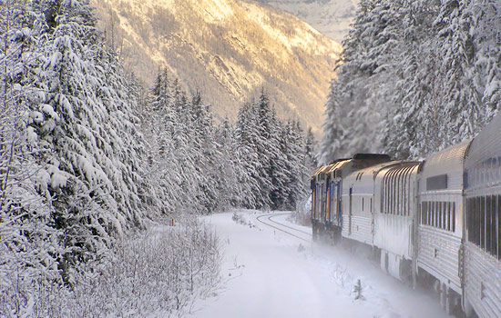 Train travelling through wintery snow covered forest