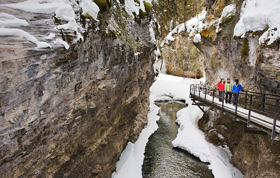 Choose to spend the day exploring frozen canyons on a guided ice walk.