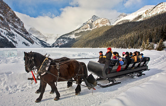 Lake Louise horse-drawn sleigh ride
