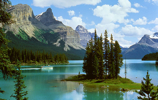 Discover the best of Jasper National Park on your choice of tour.