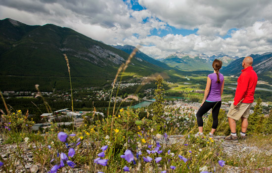 Join a guided hike at Sunshine Meadows, offering the best alpine walking trails in the Rockies.