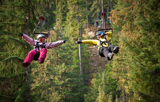 Two people fly high through the trees on a Whistler Ziptrek adventure tour