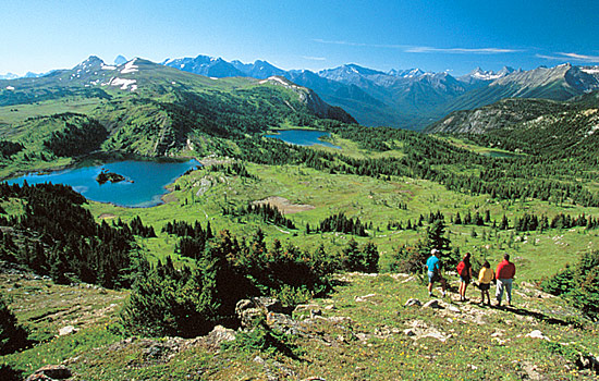 Hike to Sunshine Meadows in Banff National Park
