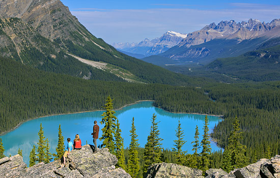 View of the turquoise waters of Peyto lake in the Rocky Mountains