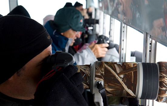 Passengers onboard the Tundra Buggy in Churchill take photos out the windows