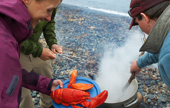 People enjoying a lobster boil on a beach in Newfoundland